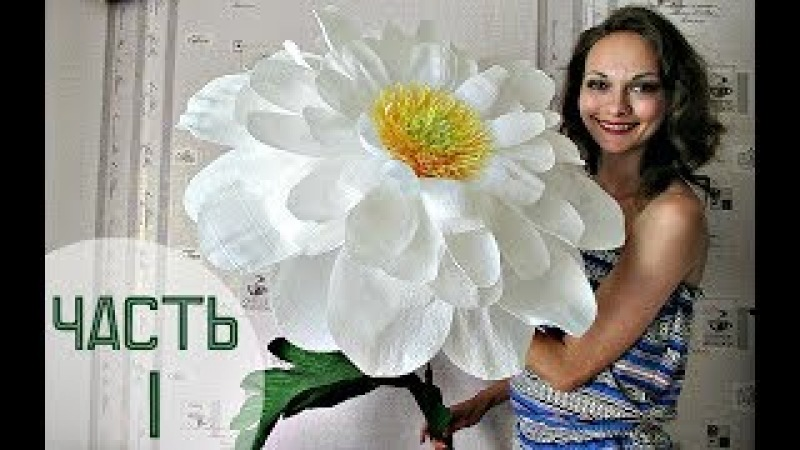 Чувствую себя Дюймовочкой :) Огромные цветы (Часть 1) / GIANT Chamomile 1