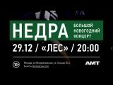 НедРа. Новогодний концерт. Прямая трансляция.
