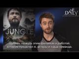 Приглашение Дэниела на просмотр фильма Джунгли (Rus sub)