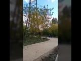 Новый парк под ЛЭП в Братеево, Братеевская пойма