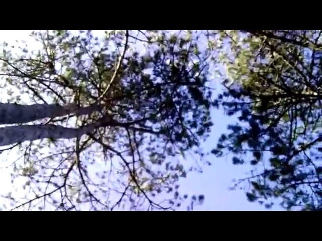 Omaha boys / James Ferraro (Short film)
