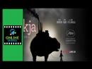 Okja  Ver pelicula completa  Link en la descripcion