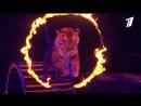 Шоу братьев Запашных «Эмоци и » в Цирке на Фонтанке