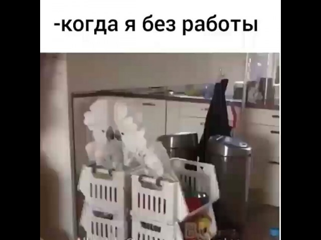 Yana_traits video