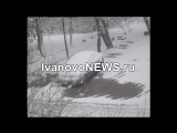 Дерево рухнуло на женщину с ребёнком в Иваново