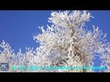 Такла-Макан – самая большая пустыня Китая – превратилась в царство снега и инея