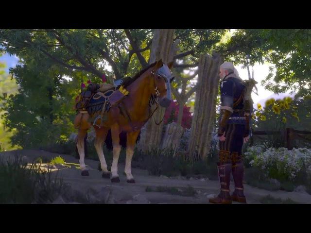 [Диалог с Плотвой] Ведьмак 3: Дикая Охота (DLC Кровь и Вино)