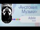 Анатомия Музыки: Adele - Skyfall