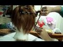 Eren wig (Shingeki no Kyojin) PARTE 1 BONUS
