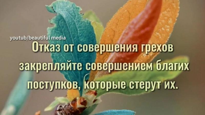2yxa_ru_Pozabotsya_o_tom_chto_vnutri_tebya_Luchshiy_sovet_dlya_ochishheniya_se_.mp4