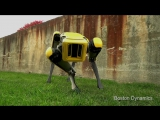 Новый робот от Boston Dynamict - The New SpotMini