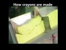 yella crayens