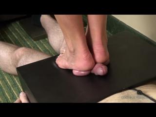 Cbt / cock crush / ball crush / foot fetish