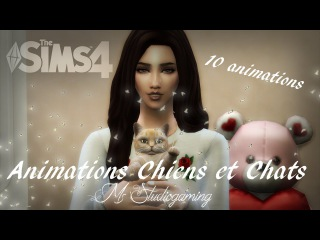 Sims 4 Animation pack Cats and Dogs (Download) #16
