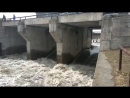 Речка Барнаулка сошла с ума — превратилась в бурный горный поток и затопила Борзовую Заимку