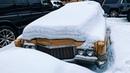 Брошенки Автомобили забытые во дворах