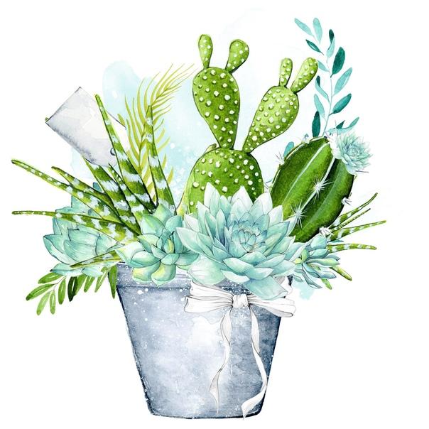 картинки для декупажа кактусы всем налить