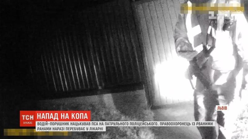 Водій євробляхи порушив ПДР і нацькував пса на поліцейського на Львівщині