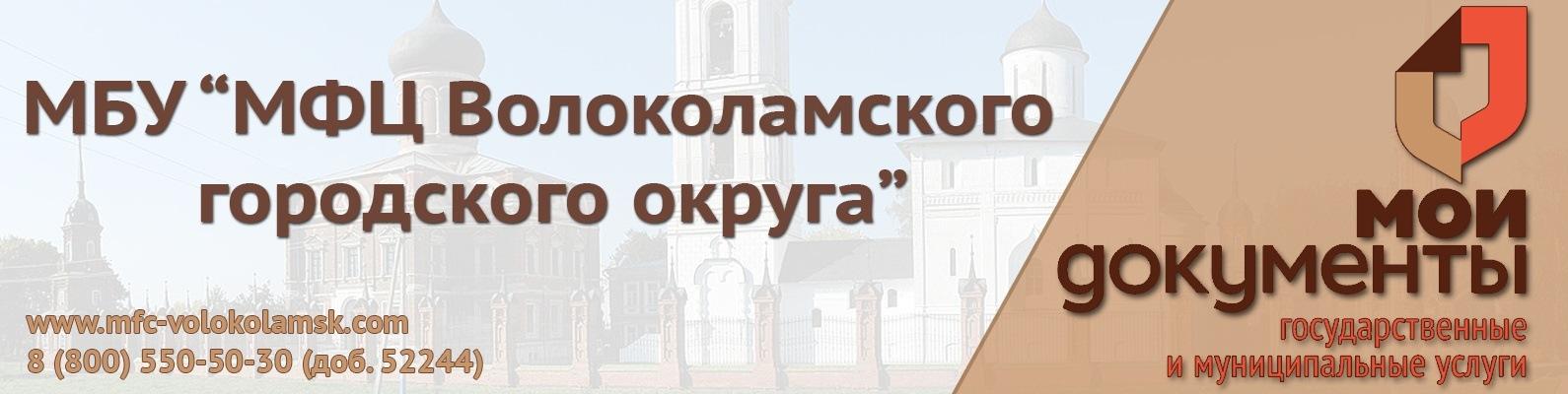 Мфц загранпаспорт нового образца москва документы