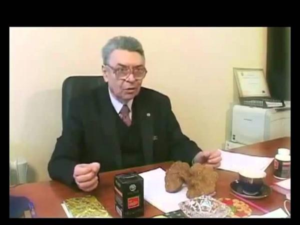 Organo Gold Moldova Что такое Ганодерма Ganoderma Lucidum Рейши Reishi
