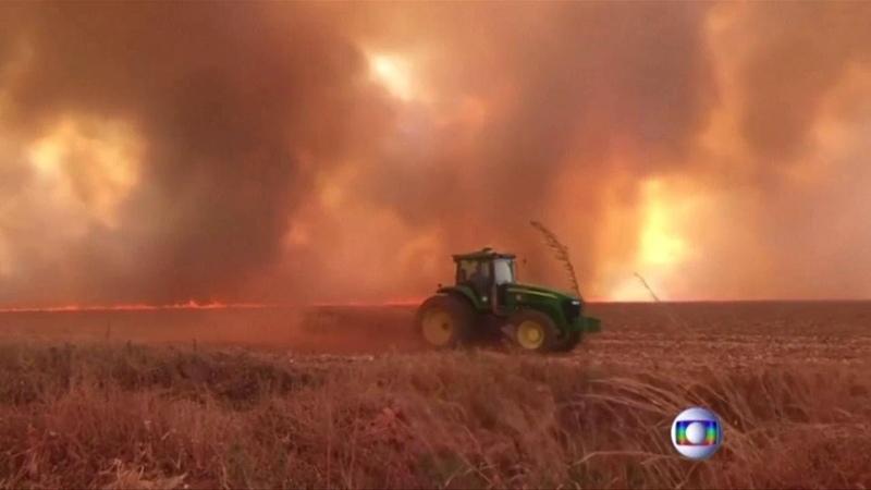 Brasile, record di incendi in Amazzonia San Paolo al buio a causa del fumo