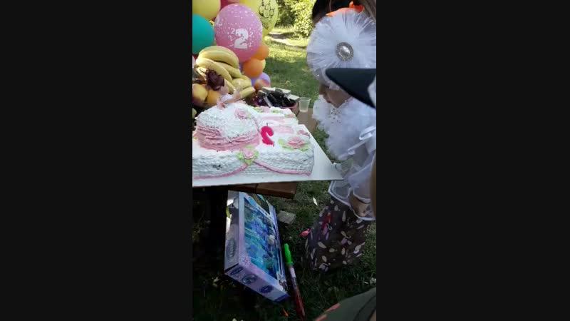 день рождение доци 2 годика