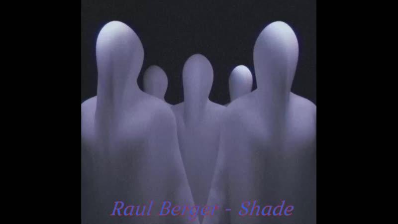 Raul Berger Shade
