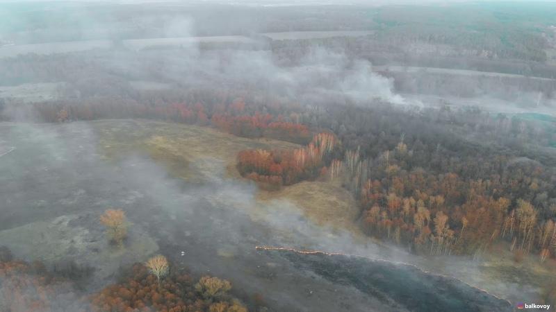 Наслідки безглуздого підпалу сухої трави у Кротенках Україна Полтава 2019