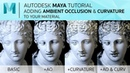 Autodesk Maya Tutorial Add Ambient Occlusion and Curvature