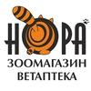 Сеть зоомагазинов Нора |Воронеж|Ст. Оскол|Сочи