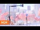 Дептранс рассмотрит предложения Лебедева по дизайну перекрестков - Москва 24
