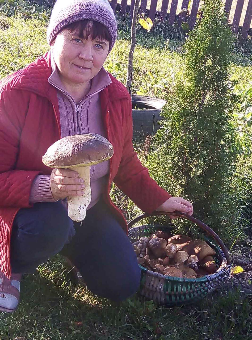 Гриб весом в 700 граммов нашла жительница Дрогичинского района