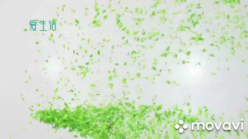 Анионовые прокладки от завода поставщика GreenLeaf