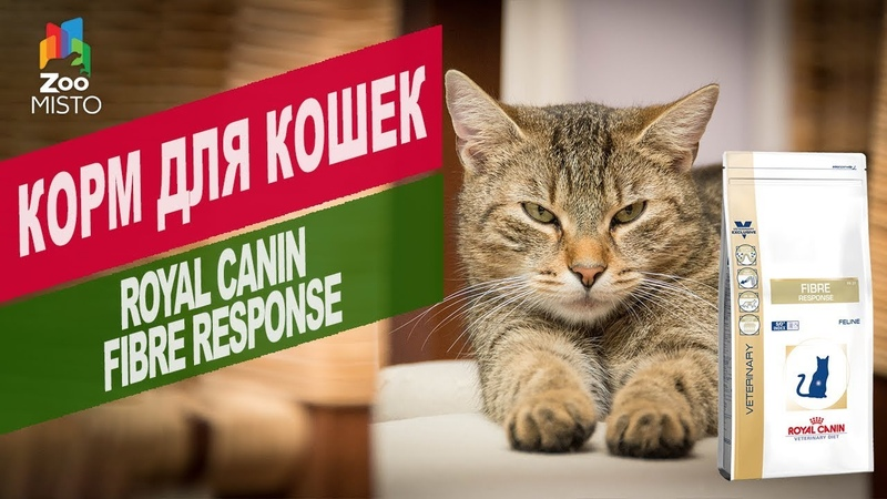 Корм для кошек Royal Canin Fibre response Обзор корм для кошек Royal Canin Fibre response