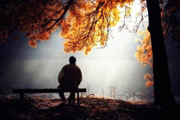 Осенняя окрылённость