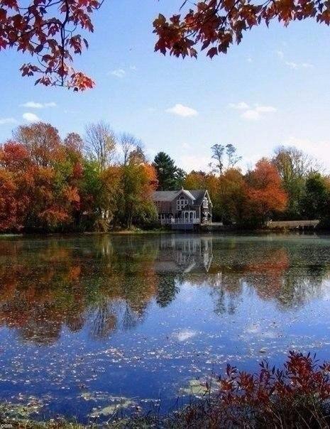 Хочется отключить телефон, взять любимую книгу и уехать в уютный домик к озеру.