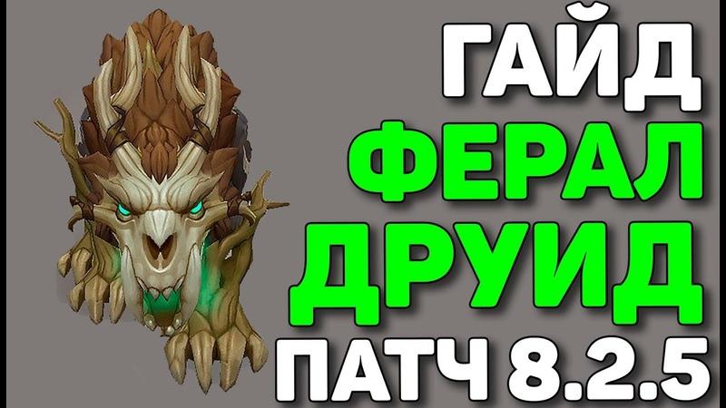 🦁Гайд на ферал друида🐆 БФА PVE патч 8.2.5🐅
