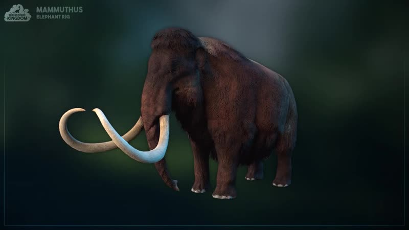 Elephant Animation Preview Mammuthus