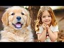 Девочка из детдома приютила щенка, а он в знак благодарности нашел ей родителей...