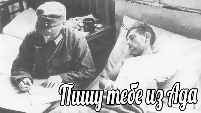 Пишу тебе из Ада, любимая. Йозеф Хольдер. 28-я пехотная дивизия Вермахта». военные истории