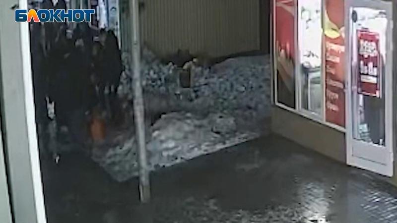 Блокнот Волгоград публикует видео убийства 16 летнего студента на Новодвинской