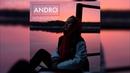 Andro Ночной рейс RASSI COVER