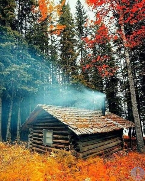 Осень прекрасна!