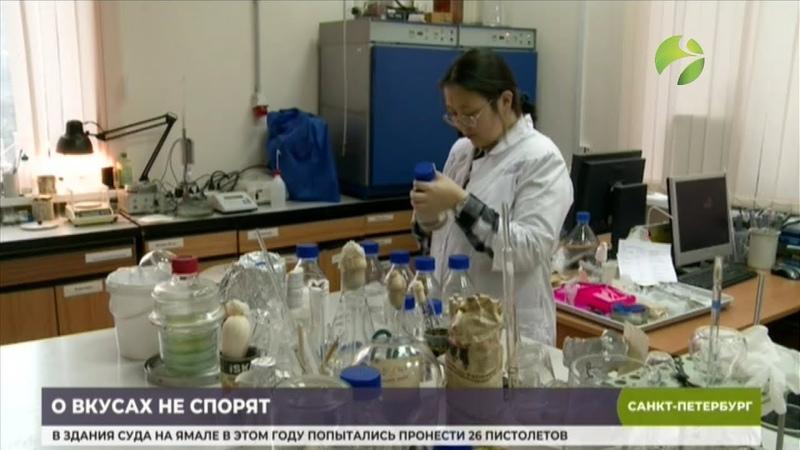 В Санкт Петербурге разводят микробов которые питаются нефтью