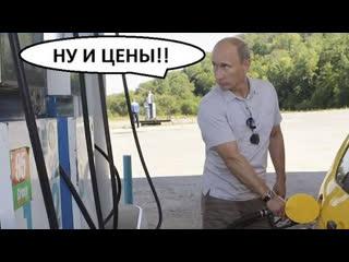 Власти России пообещали не снижать цены на бензин  пародия Белый шиповник