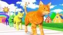 Los animales de granja y sus crías se transforman en animales salvajes en la fuente - Episodio 21