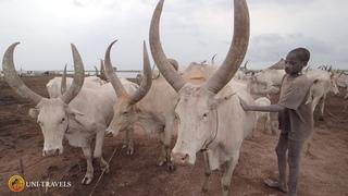 Южный Судан - Кемпинг племени Мундари