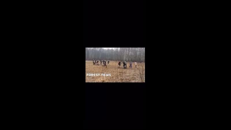 16.04.2016. проверка NTG(кб) vs проверка Shark Moscow(бг), 8х8, 1.50 мин, победа кб