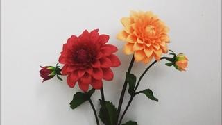 Bella's Craft/how to make Dahlia flower by crepe paper/Hướng dẫn làm hoa thược dược bằng giấy nhún