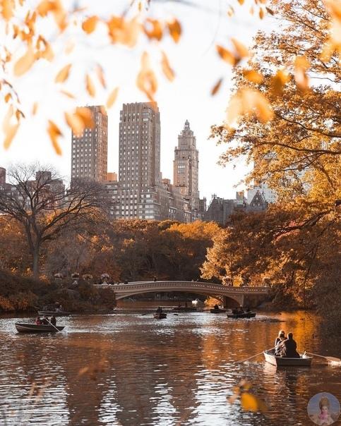 Осень в Нью-Йорке...